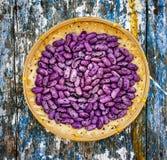 Purpurowe fasole w łozinowym pucharze Obrazy Stock