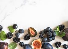 Purpurowe owoc, jagody i nowi liście, graniczą Czernicy, winogrona, śliwki i figi na bielu, wykładają marmurem tło Smakowity i do zdjęcie royalty free
