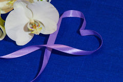 Purpurowe Serce Obraz Stock