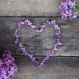 Purpurowe Serce kształt od Lilalc kwiatów Wiosna czas… wzrastał liście, naturalny tło Textured drewniana deska Mieszkanie nieatut Zdjęcia Stock