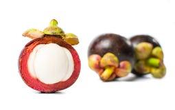 Purpurowego mangostanu tropikalna owoc odizolowywająca na bielu Obraz Stock