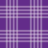 Purpurowej linii wzór Obraz Stock
