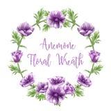 Purpurowi anemonowi kwiatów przygotowania, akwarele, tekstów szablony royalty ilustracja
