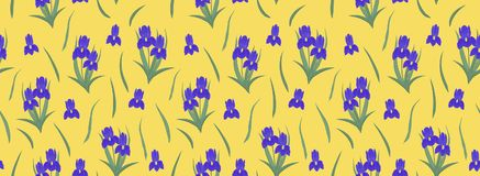 Purpurowi irysy na żółtym tle rabatowy bezszwowy Zdjęcie Stock