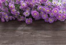 Purpurowi krajaczy kwiaty są na drewnianym tle Obraz Royalty Free