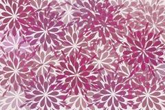 purpurowi piękni kwiaty Obrazy Stock