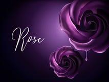 Purpurowi róża elementy ilustracji