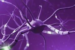 Purpurowi rozjarzeni neurony nad purpurowym tłem ilustracji