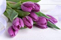 purpurowi tulipany obraz stock