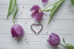 Purpurowi tulipany z zielonymi liśćmi, serce wykładali z purpurowymi kamieniami w środku Przestrzeń dla teksta Zdjęcia Royalty Free