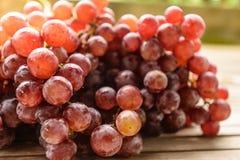 Purpurowi winogrona świezi Zdjęcie Stock