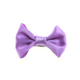 Purpurowy łęku krawat Obrazy Stock