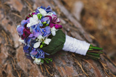 Purpurowy błękitnej panny młodej bukiet na drzewie Zdjęcie Royalty Free