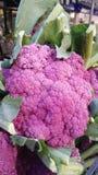 Purpurowy Coliflower Vegatable Zjednoczone Królestwo Zdjęcia Royalty Free