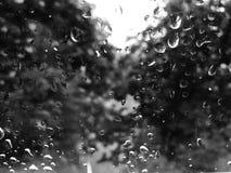purpurowy deszcz okno Fotografia Royalty Free