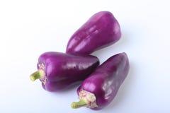 Purpurowy egzotyczny kolorów dzwonkowych pieprzy bielu tło Obrazy Royalty Free