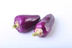 Purpurowy egzotyczny kolorów dzwonkowych pieprzy bielu tło Zdjęcia Stock