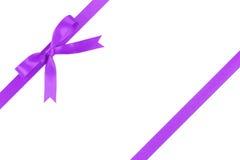 Purpurowy faborek z łękiem dla pakować z ogonami obraz stock