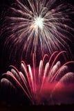 Purpurowy fajerwerku pokaz Obraz Stock