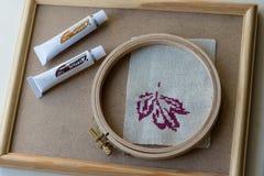 Purpurowy jesieni drewna i liścia ramowy odgórny widok Obrazy Royalty Free