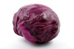purpurowy kapuściane Obrazy Stock