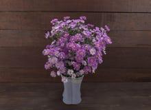 Purpurowy krajacz kwitnie w wazie na drewnianym tle, Obrazy Stock