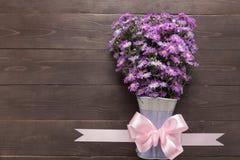 Purpurowy krajacza kwiat waza i faborek jesteśmy na drewnianych półdupkach Zdjęcia Royalty Free