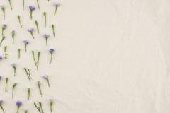 Purpurowy krajaczy kwiatów wzór Obrazy Royalty Free