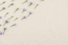 Purpurowy krajaczy kwiatów wzór Zdjęcia Stock