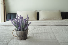 Purpurowy Lawendowy kwiat na łóżku Obrazy Royalty Free