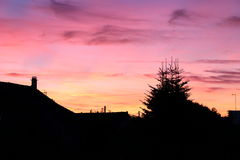 Purpurowy niebo w zmierzchu Zdjęcia Stock