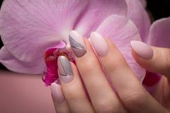 Purpurowy staranny manicure na kobiet r?kach na kwiatu tle Gwo?dzia projekt obraz royalty free