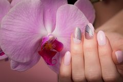 Purpurowy staranny manicure na kobiet r?kach na kwiatu tle Gwo?dzia projekt obrazy royalty free