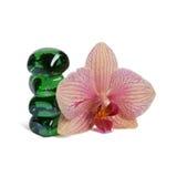Purpurowy Storczykowy kwiat odizolowywający zdjęcia stock
