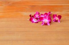 Purpurowy storczykowy piękny na drewnianej podłogowej desce z kopia tekstem i przestrzenią obrazy royalty free