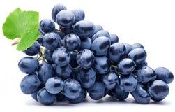 Purpurowy winogrono z zielonym liściem odizolowywającym Fotografia Stock