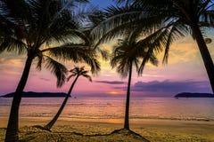 Purpurowy zmierzch nad plażą zdjęcia royalty free