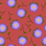 Purpurrote Aster, Gänseblümchen auf rotem Hintergrund Auch im corel abgehobenen Betrag Stockbilder