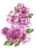 Purpurrote Blume der eleganten Weinlese der Aquarellgouache handgemalt lizenzfreie abbildung