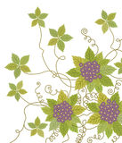 Purpurrote Blume und Reben Lizenzfreies Stockfoto