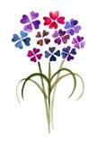 Purpurrote Blumen lizenzfreie abbildung