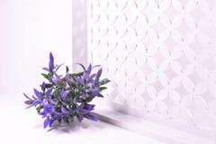Purpurrote Blumen auf einem weißen openwork Hintergrund Lizenzfreie Stockfotografie