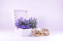Purpurrote Blumen in einem weißen aufwändigen Kasten Lizenzfreie Stockbilder
