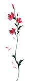 Purpurrote Blumenillustration des einzelnen wilden Aquarells Stockbilder