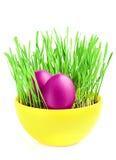 Purpurrote Eier im grünen Gras. Lizenzfreie Stockfotos