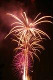 Purpurrote Feuerwerke Stockfotografie