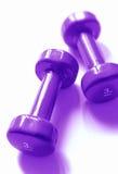 Purpurrote Gewichte stockbild