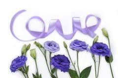Purpurrote Liebe Stockbild