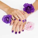 Purpurrote Maniküre und Blumen stockfoto