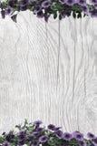 Purpurrote Petunien auf Holzoberfläche mit Patina Lizenzfreie Stockfotos